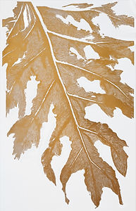 Lacy Tree Philodendron - Gold Edition
