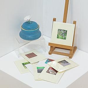 Rosemary Bonney Original Art Cards