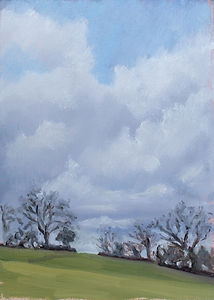 Fields In Dartington