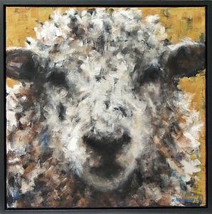 Sheep, Ochre
