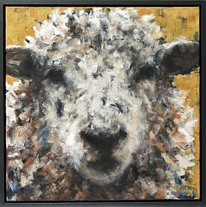Sheep, Ochre