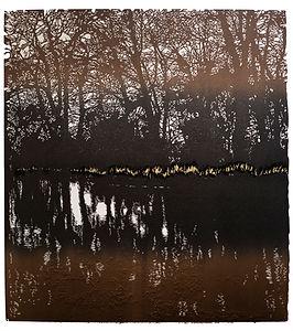 Woodland, Brown Clee