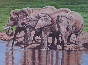 At the Waterhole - African Elephants
