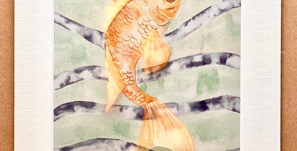 AKA Fish