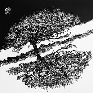 Blackator Tree, North Dartmoor