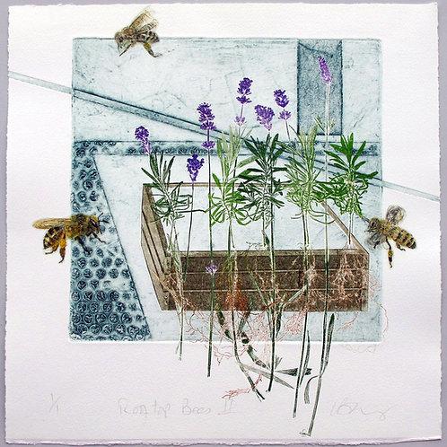 Rooftop Bees II