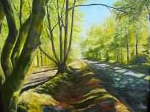 Road To Dawlish