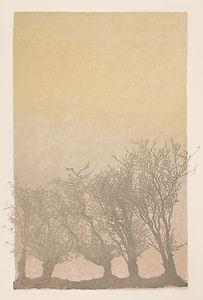 Five Trees in Mist