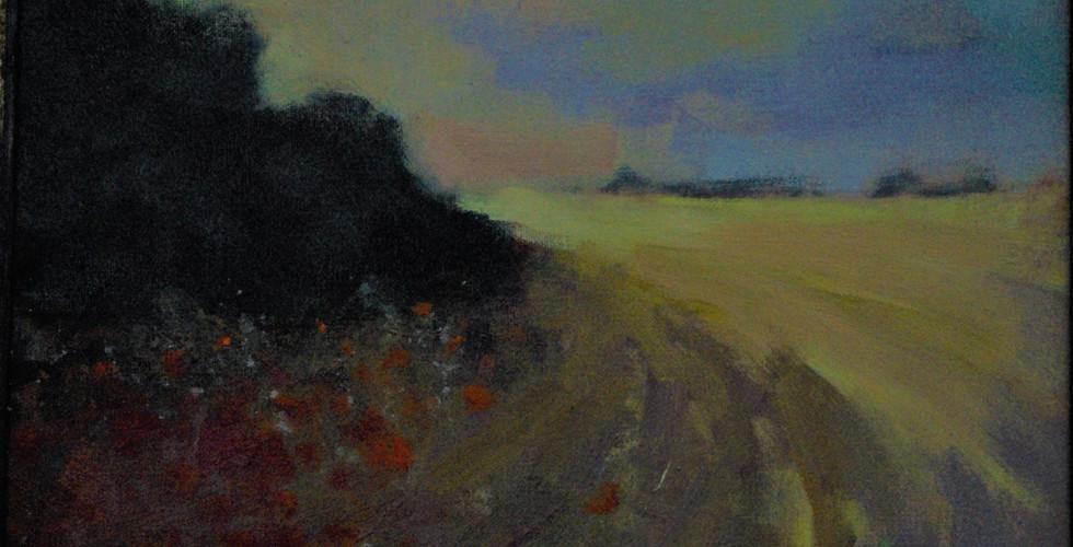 About Devon, Corner  of a Field