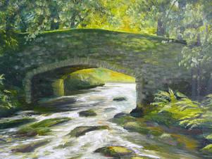 Spitchwick Dartmoor
