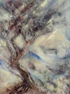 Storm on Dartmoor