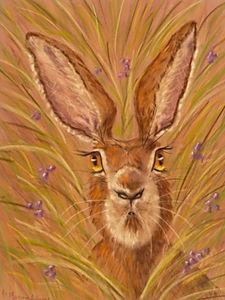 Hare I Am!