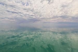 Becalmed, Sharks Bay
