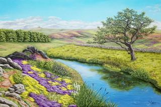 A Dartmoor Tree
