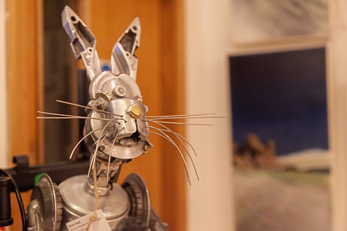 Hare Bot
