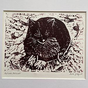Autumn Pussycat