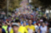 2013-maraton.jpg