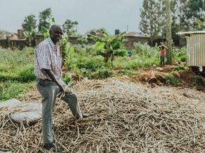How to make sugarcane briquettes: