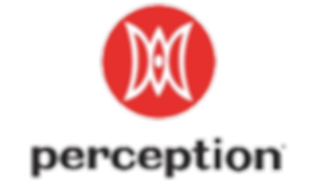 PERCEPTION LOGO.png