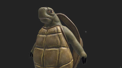 CHARACTER CONCEPT - TURTLE