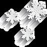 snowflakes_2.png