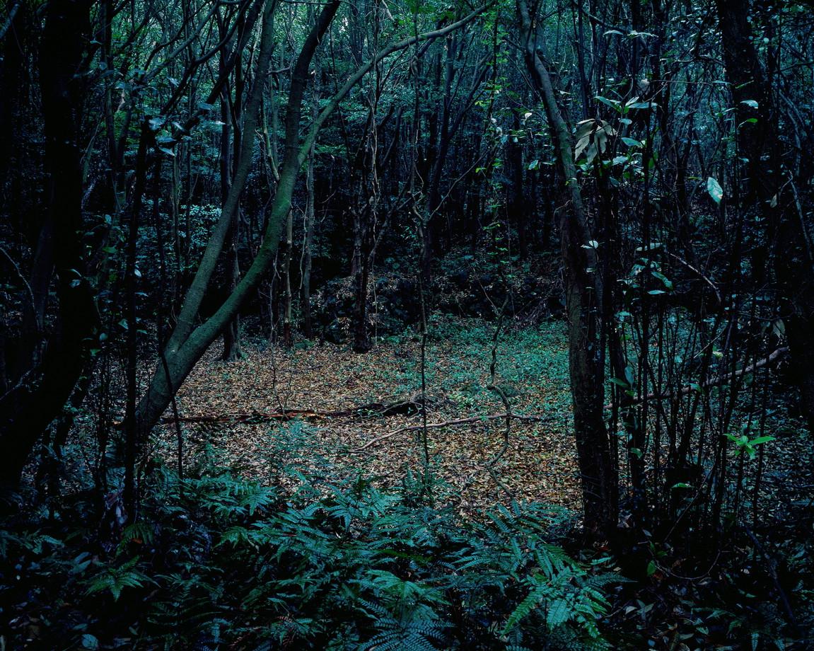 문명의 조각-3, 80x100cm, C print, 2014