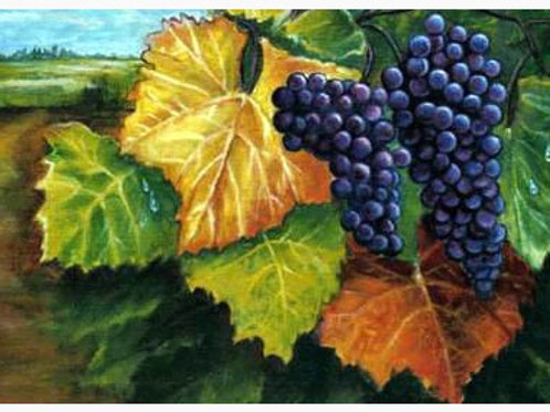Wine Country Art 5X7 Note Cards