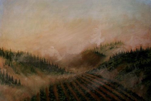MORNING MIST (sw)16X20 Canvas Wrap Giclee