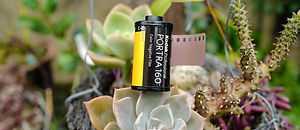 portra 160 review
