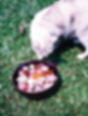 Fujifilm 160 NS profile