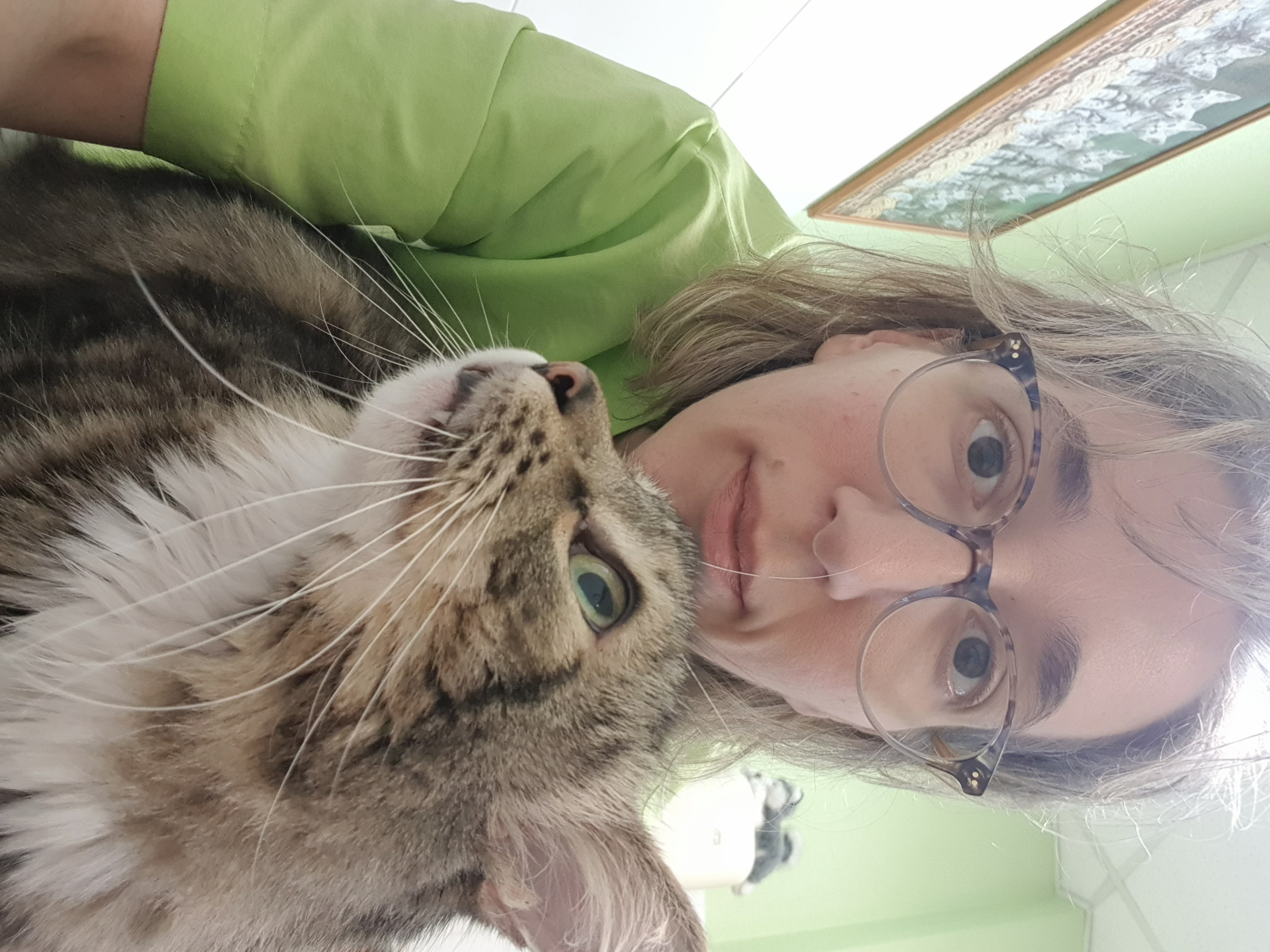 Con otro de nuestros gatos