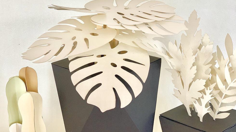 Pastel Black Potted Plant & Succulent Set B