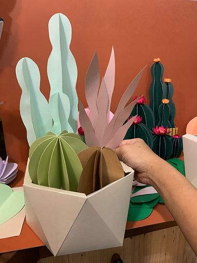 paper potted plants dh paper art.jpg