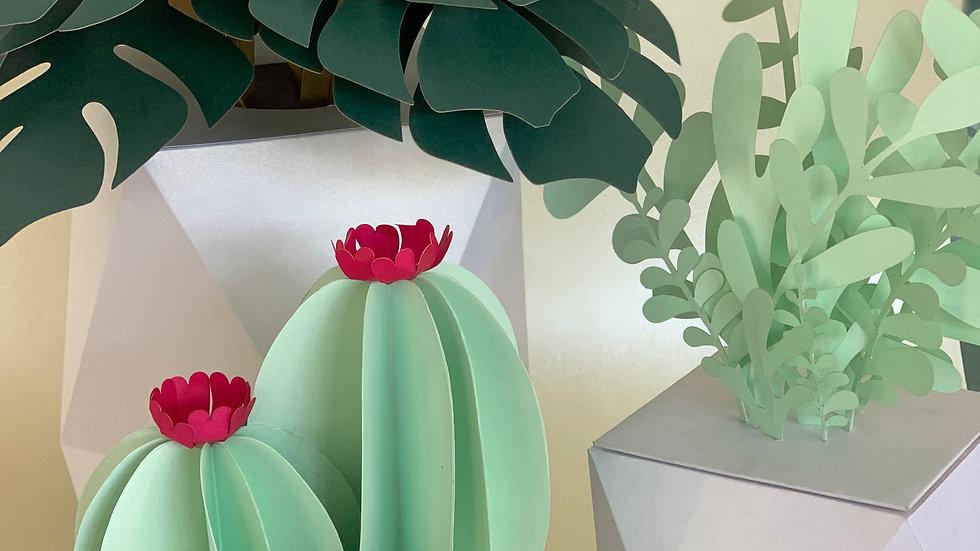 White Potted Plant & Succulent Set A