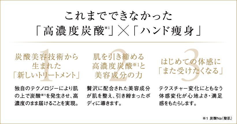 HSP_web_005