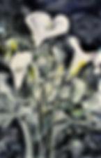 calla lillies wc.jpg