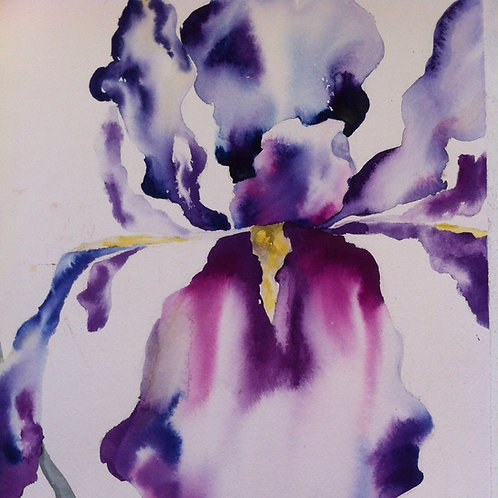 Loose & Lively Watercolor Demo - Art Gallery@Prism