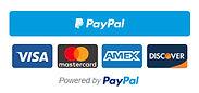 membership-smart-button-checkout.jpg