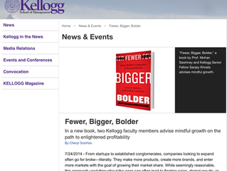 Book now available:  Fewer Bigger Bolder