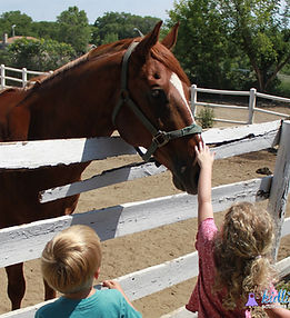 kids pet horse.jpg