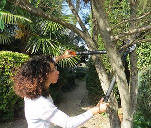 Entretien de vos epaces verts : taille, désherbage, tonte, etc.
