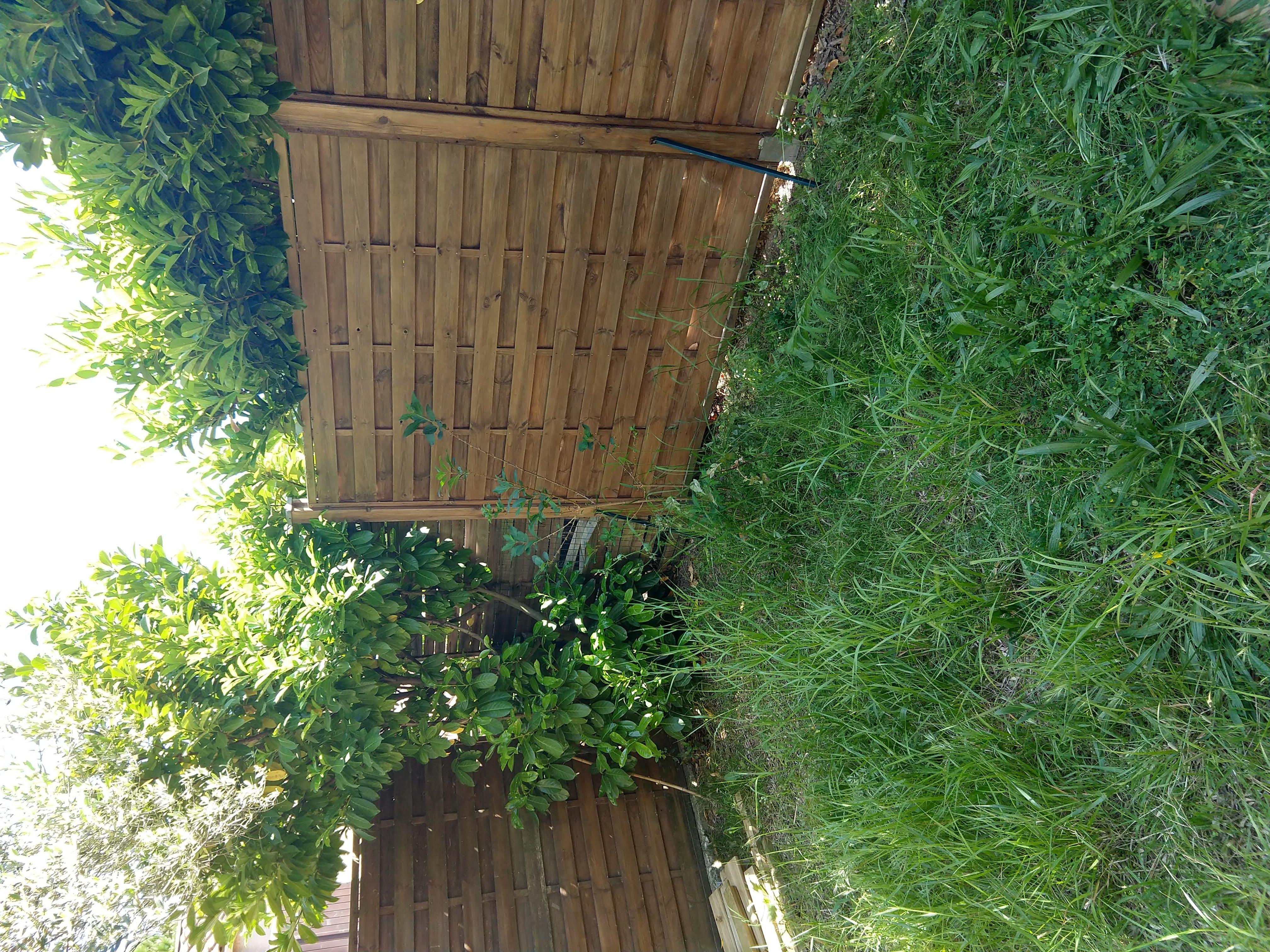 Un jardin à naître : 2ème vue