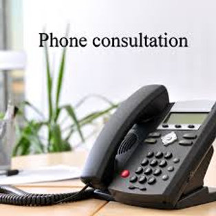 20 min Professional Phone consultation with Dr. Turner