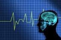 60 min EEG Web Consultation