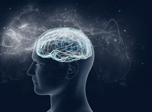 Emotions in the brain – Are there little people living inside my head?