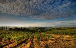 Panorama_vicino_certaldo