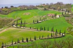 tuscany-landscape_35983