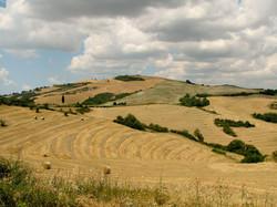 Tuscany_landscape_west_of_Siena