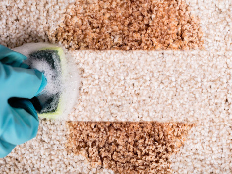 Which Are The Advantages of Getting Your Carpet Cleaned Professionally?