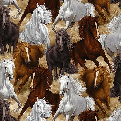 Multi Wild Horses